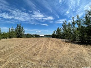 Photo 6: 3 Lucien Lakeshore Drive in Lucien Lake: Lot/Land for sale : MLS®# SK838655