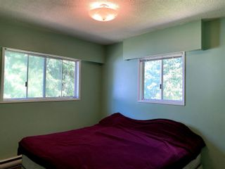 Photo 16: 3797 Sommerville-Husted Road, in Malakwa: House for sale : MLS®# 10223446