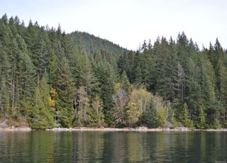 Photo 12: DL 1445 Dent Island in : Isl Small Islands (Campbell River Area) Land for sale (Islands)  : MLS®# 861220