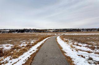 Photo 49: 324 Deerbrook Mews SE in Calgary: Deer Run Detached for sale : MLS®# A1049991