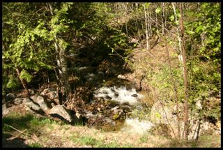 Photo 23: 21 6500 Southwest 15 Avenue in Salmon Arm: Panorama Ranch Vacant Land for sale : MLS®# 10230290