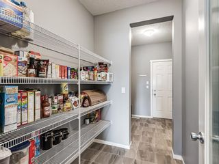 Photo 20: 229 Kingsmere Cove SE: Airdrie Detached for sale : MLS®# A1121819