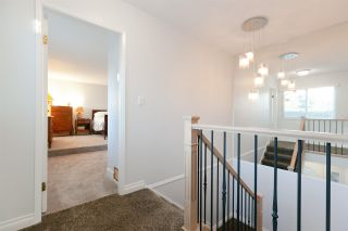 Photo 12: 12 3397 HASTINGS STREET in Port Coquitlam: Woodland Acres PQ Townhouse for sale : MLS®# R2341622