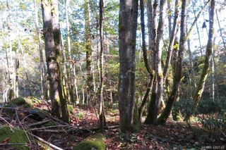 Photo 13: 4861 West Saanich Rd in SAANICHTON: SW Beaver Lake Land for sale (Saanich West)  : MLS®# 799671