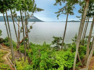 Photo 46: 3615 Crab Pot Lane in : ML Cobble Hill House for sale (Malahat & Area)  : MLS®# 878563