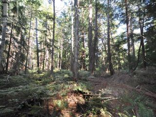 Photo 11: 1239/1241 VANCOUVER BLVD in Savary Island: Vacant Land for sale : MLS®# 16136