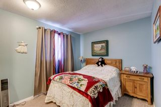 Photo 12: 10 Abalone Crescent NE in Calgary: Abbeydale Detached for sale : MLS®# A1072255
