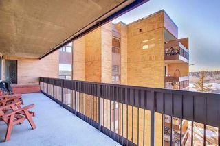 Photo 19: 505 9800 Horton Road SW in Calgary: Haysboro Apartment for sale : MLS®# A1060584