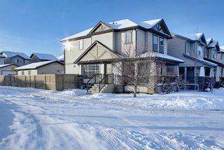 Photo 33: 101 Silverado Plains Close SW in Calgary: Silverado Detached for sale : MLS®# A1068020