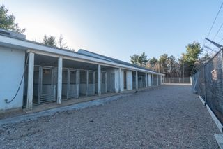 Photo 27: 10301 Highway 201 in Meadowvale: 400-Annapolis County Commercial  (Annapolis Valley)  : MLS®# 202106043