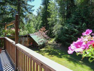 Photo 39: 3875 Dohm Rd in BLACK CREEK: CV Merville Black Creek House for sale (Comox Valley)  : MLS®# 791992