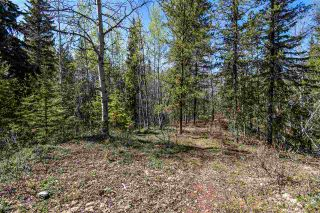 Photo 6: 3205 MILLAR Road in Smithers: Smithers - Rural House for sale (Smithers And Area (Zone 54))  : MLS®# R2475972