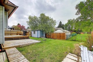 Photo 44: 23 Castlefall Way NE in Calgary: Castleridge Detached for sale : MLS®# A1141276