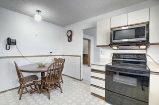 Photo 13: 3711 39 Street NE in Calgary: Whitehorn Detached for sale : MLS®# A1063183