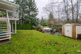 """Photo 37: 9142 212A Place in Langley: Walnut Grove House for sale in """"Walnut Grove"""" : MLS®# R2520134"""