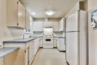 Photo 8: 9420 119 Street in Delta: Annieville House for sale (N. Delta)  : MLS®# R2266549