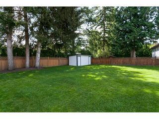 """Photo 33: 3952 205B Street in Langley: Brookswood Langley House for sale in """"Brookswood"""" : MLS®# R2486074"""