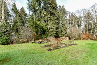 Photo 7: 13853 64 Avenue in Surrey: West Newton House for sale : MLS®# R2337342