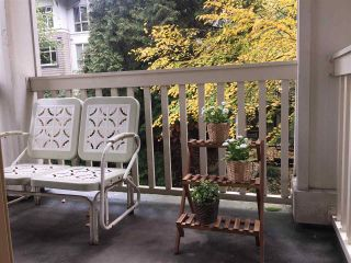 """Photo 12: 211 2083 W 33RD Avenue in Vancouver: Quilchena Condo for sale in """"DEVONSHIRE HOUSE"""" (Vancouver West)  : MLS®# R2115581"""