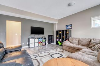 Photo 29: 9 Copperfield Point SE in Calgary: Copperfield Detached for sale : MLS®# A1100718
