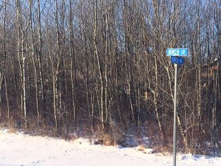 Photo 8:  in Wainwright MD: Silver Willow Estates Land Only for sale (MD of Wainwright)  : MLS®# A1060037