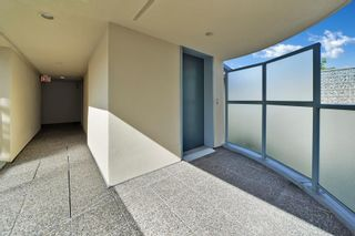 """Photo 5: 202 3641 W 28TH Avenue in Vancouver: Dunbar Condo for sale in """"KENSINGTON COURT"""" (Vancouver West)  : MLS®# R2576737"""