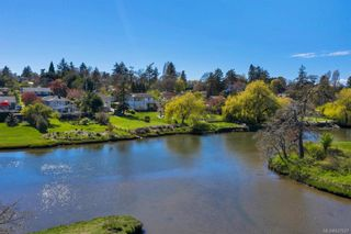 Photo 3: 734 Newbury St in Saanich: SW Gorge House for sale (Saanich West)  : MLS®# 837827