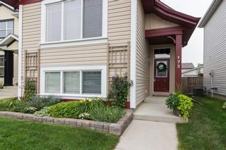 Photo 3: 172 COPPERFIELD Rise SE in Calgary: Copperfield Detached for sale : MLS®# C4201134