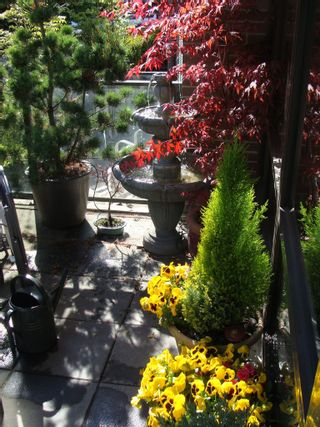 """Photo 12: 162 W 1ST Street in North Vancouver: Lower Lonsdale Townhouse for sale in """"ONE PARK LANE"""" : MLS®# R2024415"""
