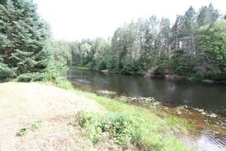 Photo 22: 300 Pinery Road in Kawartha Lakes: Rural Somerville Property for sale : MLS®# X4840235