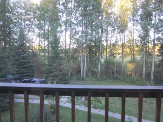 Photo 15: 53022 Range Road 172, Yellowhead County in : Edson Country Residential for sale : MLS®# 28643