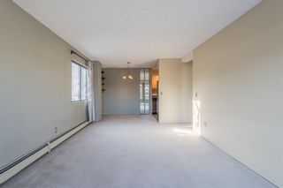 Photo 17: 302 1222 Kensington Close NW in Calgary: Hillhurst Apartment for sale : MLS®# A1056471