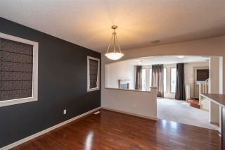 Photo 14: 9143 213 Street in Edmonton: Zone 58 House for sale : MLS®# E4250638