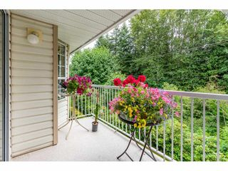"Photo 25: 48 2938 TRAFALGAR Street in Abbotsford: Central Abbotsford Townhouse for sale in ""Trafalgar Park"" : MLS®# R2475643"