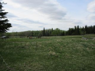Photo 24: 63202 RR 194: Rural Thorhild County House for sale : MLS®# E4246203