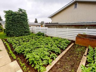 Photo 35: 15203 69 Street in Edmonton: Zone 02 House for sale : MLS®# E4249367