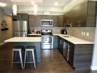 Photo 12: 305 10006 83 Avenue in Edmonton: Zone 15 Condo for sale : MLS®# E4255743