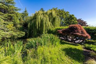 Photo 11: 3965 Locarno Lane in VICTORIA: SE Arbutus House for sale (Saanich East)  : MLS®# 842621
