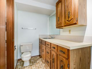 Photo 23: 1233 Smith Avenue: Crossfield Detached for sale : MLS®# A1034892