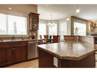 Photo 16: 118 PANATELLA CI NW in Calgary: Panorama Hills House for sale : MLS®# C4078386