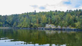 Photo 3: Lot 19 Five Point Island in South of Kenora: Vacant Land for sale : MLS®# TB212087