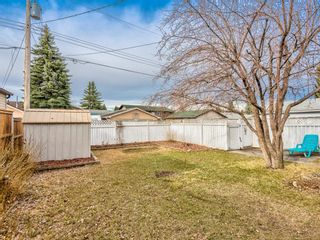 Photo 35: 296 Queen Alexandra Road SE in Calgary: Queensland Detached for sale : MLS®# A1088283