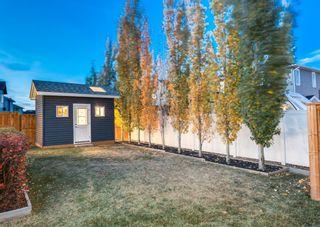 Photo 42: 72 Silverado Ridge Crescent SW in Calgary: Silverado Detached for sale : MLS®# A1153692