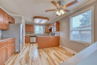 Photo 6: 355 Whitman Place NE in Calgary: Whitehorn Detached for sale : MLS®# A1046651