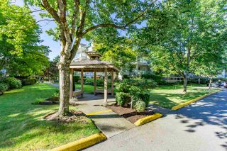 """Photo 28: 408 20433 53 Avenue in Langley: Langley City Condo for sale in """"COUNTRYSIDE ESTATES"""" : MLS®# R2492366"""