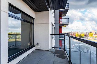 Photo 22:  in Edmonton: Zone 56 Condo for sale : MLS®# E4261837