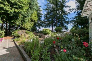 Photo 3: : West Vancouver House for rent : MLS®# AR017G