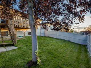 Photo 42: 5 103 ADDINGTON Drive: Red Deer Row/Townhouse for sale : MLS®# A1027789