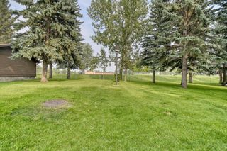 Photo 22: 42 336 Rundlehill Drive NE in Calgary: Rundle Row/Townhouse for sale : MLS®# A1101344