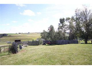 Photo 19: 270020 RGE RD 45 in COCHRANE: Rural Rocky View MD Residential Detached Single Family for sale : MLS®# C3503271